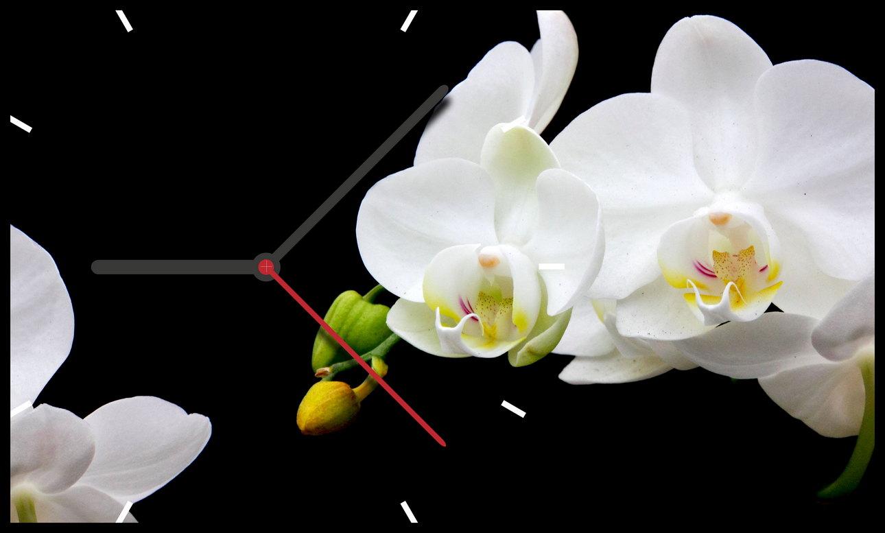 Часы Белая Орхидея